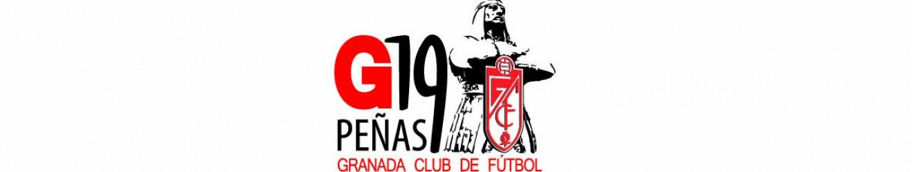 Asociacin G19 Peas del Granada CF